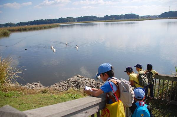 手賀沼親水公園