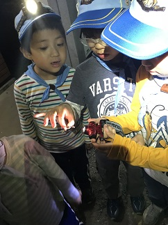 カブ・ビーバー1泊キャンプ2018 ビーバー隊の記録②