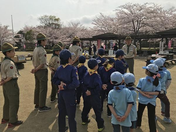 【B面ブログ】桜まつりで広報活動